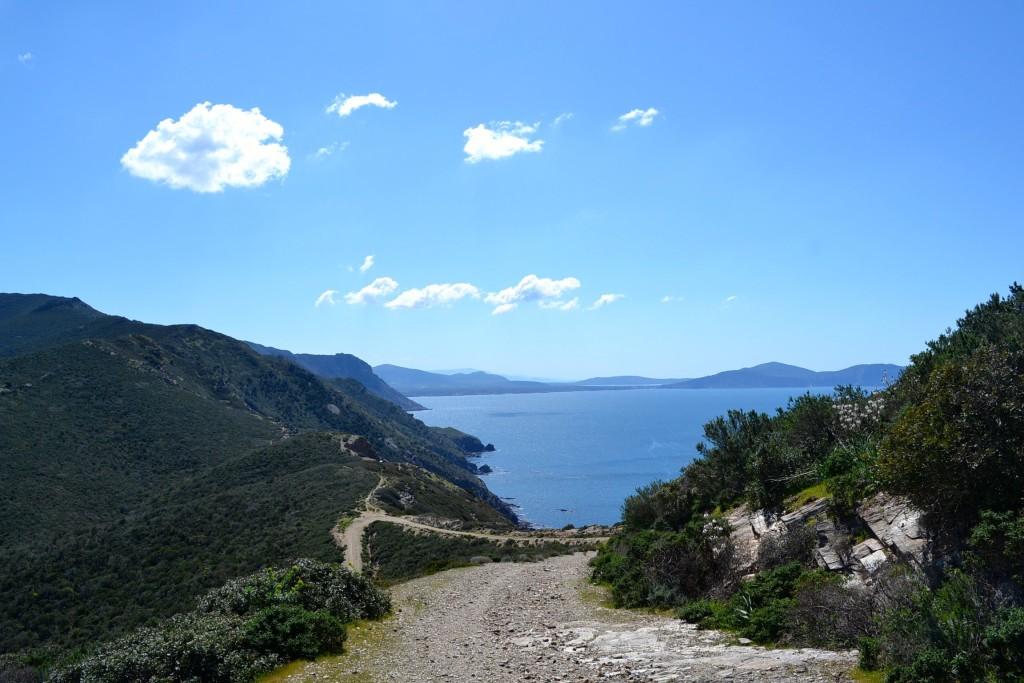 11.Sardegna (la Vedetta)