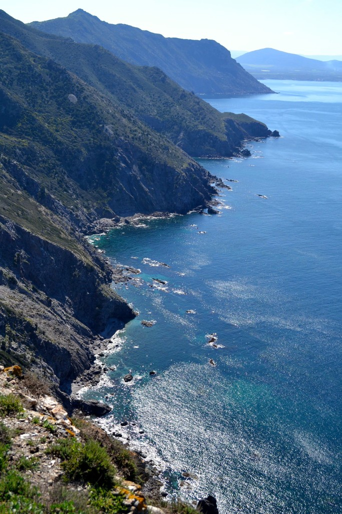 8.Sardegna (la Vedetta)