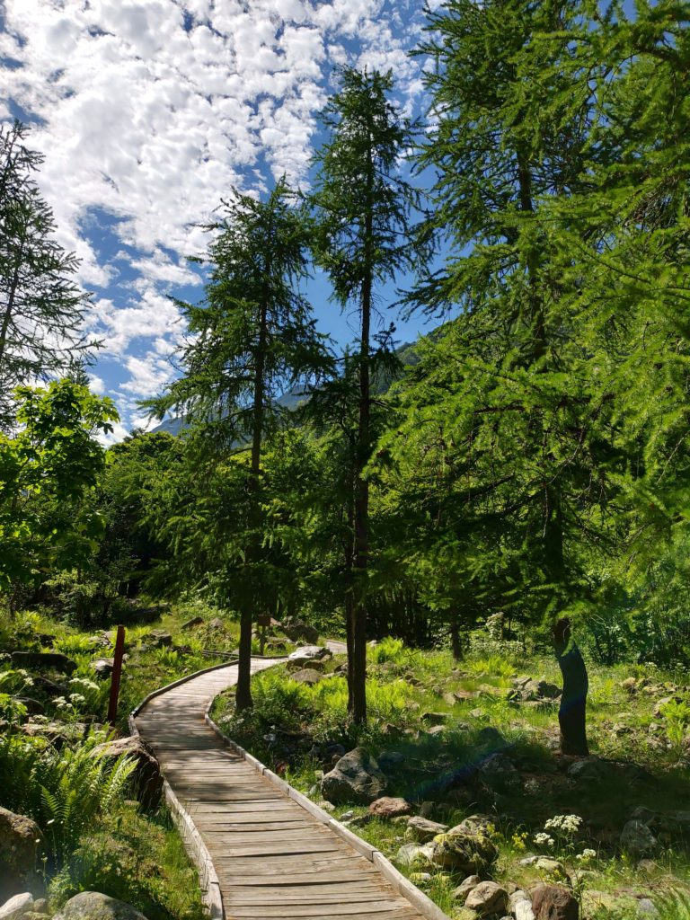Camminamenti in legno presso Valderia