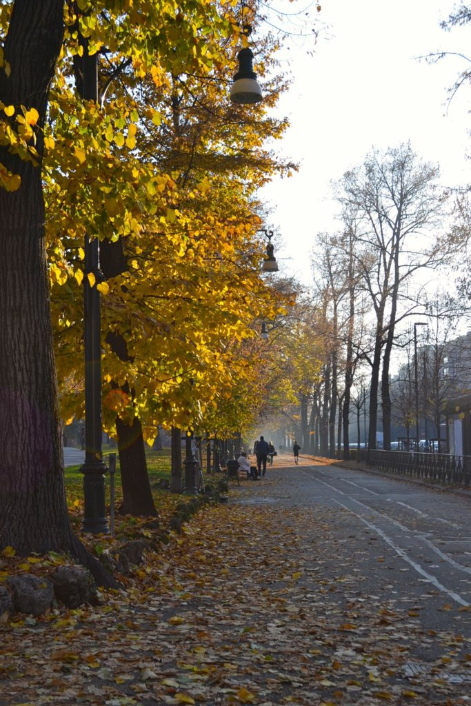 Torino, Parco del Valentino al tramonto